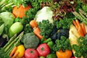 农产品概念股