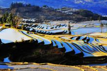 生态农业建设发展 应上升为国家战略