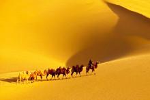 叶檀:现代版丝绸之路要获得成功 要突出商业属性