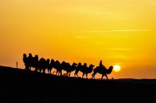 习近平新年首访中东 助推陆上丝绸之路发展