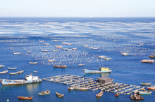 工信部与海洋局共同促海洋经济发展