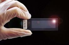 生物芯片或助人类终结透析
