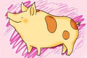 猪肉涨价概念股