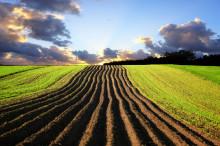 """财政部、农业部联合发布《关于全面推开农业""""三项补贴""""改革工作的通知》"""