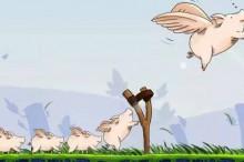 """全国生猪均价首度破10 """"猪坚强""""明显强于市场预期"""