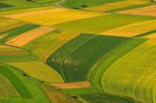 农垦改革试点方案发布