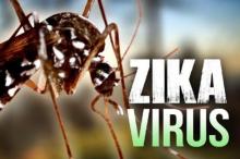 世卫组织:寨卡病毒地域扩散加剧 尚无有效疫苗