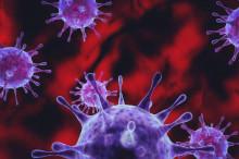 诺如病毒感染进入高发期