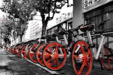 """北京""""禁停大街""""为共享单车划出4处停车点"""