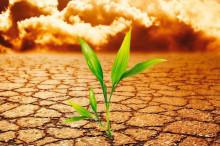 农业部提出土壤污染治理目标