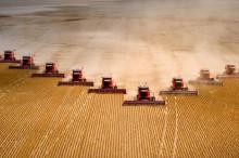 农业部:加大家庭农场扶持力度 壮大农业产业化龙头