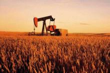 我国将大力推广使用乙醇汽油